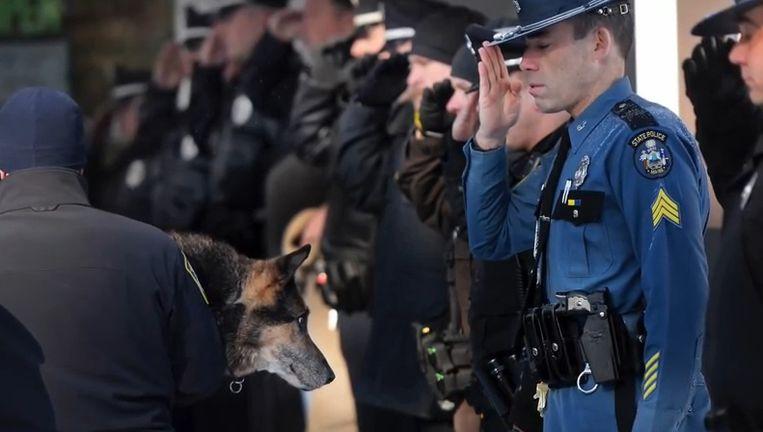 Agenten bewijzen K9-hond Sultan een laatste indrukwekkende eer.