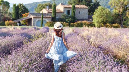 Amper nog plaats in Frankrijk: gaat prijs van vakanties nu omhoog? En zijn er regio's waar het minder druk is? Al uw vragen beantwoord