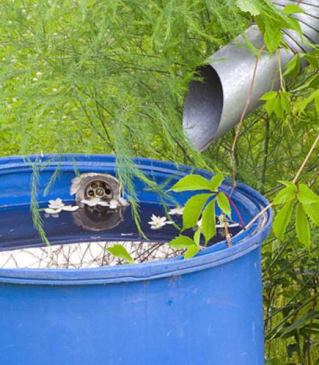 Pijpenkappuh: afgekoppelde regenpijp in Neerbosch-Oost moet riool sparen bij regen