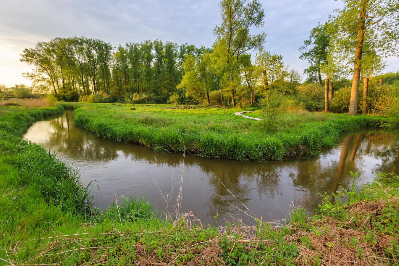 Het riviertje de Dommel in Zuidoost-Brabant.