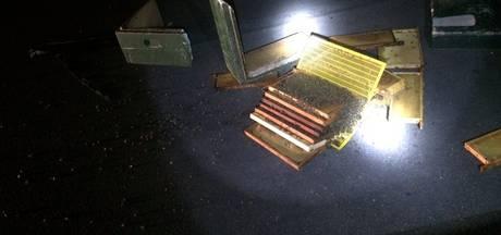 Kapotte bijenkast op vluchtstrook langs A73, weginspecteur 'niet blij'
