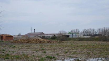 Openbaar Ministerie vraagt exploitatieverbod voor biogasbedrijf