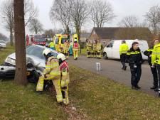 BMW-rijder gewond bij crash tegen boom in Lutten