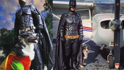 Barmhartige piloot redt als Batman huisdieren van spuitje