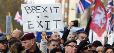 'Groot-Brittannië mag brexit terugdraaien en EU-lid blijven'