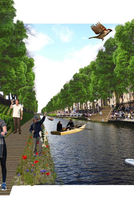 Wat je met de Zuid-Willemsvaart moet doen? Dempen, vindt een buurtbewoner