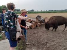 Geffen geportretteerd door bekend NPO Radio 2-programma: Van de bizons, naar het café en de kerk