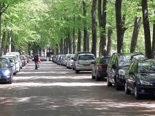 'Wandelroute Mastbos Breda is ideaal, want scheelt vijf graden met stadscentrum'