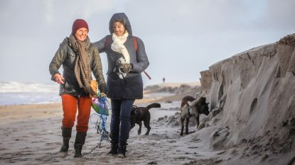 40.000 vrachtwagens vol zand én extra werken moeten Knokke-Heist beschermen tegen kliffen