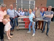 De Snelvlucht in Oldenzaal bestaat 100 jaar: 'Steeds meer handel en minder hobby'