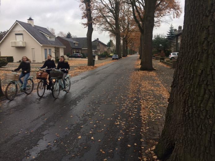 Nu zijn de bewoners van de Heinsbergenstraat weer boos op de gemeente Uden. Hun straat wordt een fietsstraat met een richtingsverkeer.