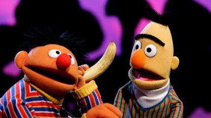 Waarom Bert en Ernie geen homo mogen zijn