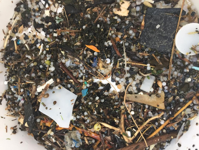 Het ligt stikvol nurdles op het strand bij Neeltje Jans. dit is de buit na een paar uurtje zeven