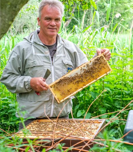 Imker Pierre is dag en nacht bezig met honing maken: 'Elke pot smaakt anders, je kunt bijen niet sturen'
