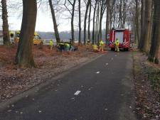 Auto rijdt tegen een boom op Varsseveldseweg
