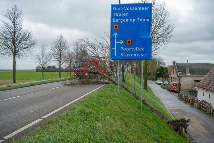 De brandweer is naar de Javadijk in Sint Annaland gegaan om de omgewaaide boom in stukken te zagen.