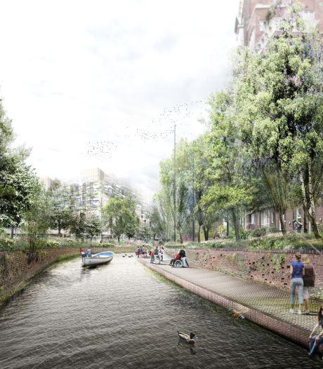Dag van de Groene Kades in Breda: ontdekkingstocht naar planten en insecten