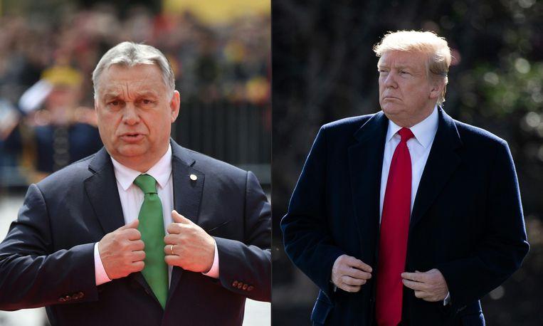 De Amerikaanse president Trump ontvangt vandaag de Hongaarse premier Viktor Orbán Beeld AFP