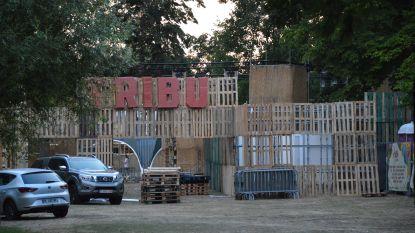 Vierde Tribù-festival in stadspark