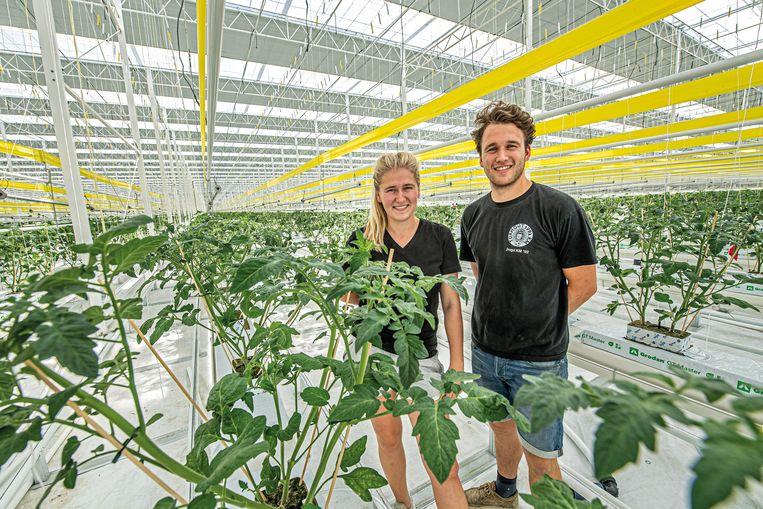 Sien en Zeger Coghe in de gigantische serre waar deze week volop tomatenplantjes worden geplant.