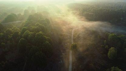Adembenemende zonsopgang in het Nationaal Park Hoge Kempen