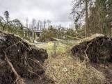 Hoe heb jij de storm in onze regio ervaren?