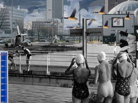 Het gebied rond station Rotterdam-Alexander biedt grote kansen