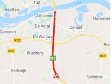 Grootschalig vertier pal langs de A2 | Bommelerwaard | bd.nl