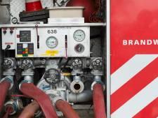 Zeven vrijwillige brandweermannen in West Maas en Waal hebben een koninklijke onderscheiding gekregen