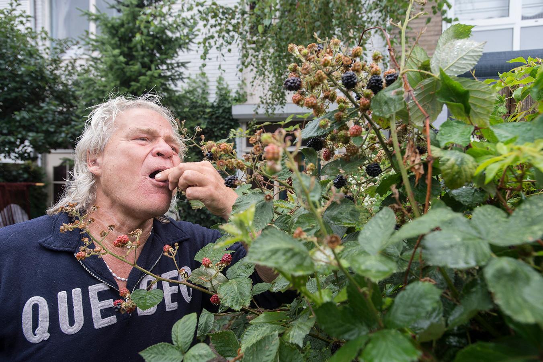 """Ruud Benard eet bramen uit eigen tuin: ,,Een groene tuin is echt iets waar je zélf ook plezier aan kunt beleven."""""""