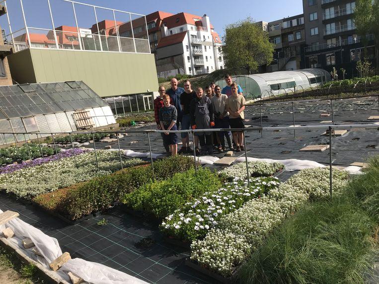 Leerlingen bijzonder onderwijs De Rozenkrans verkopen bloemen en planten van eigen kweek.