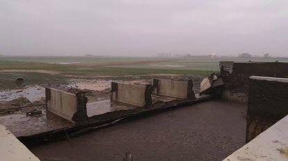 1,8 miljoen liter vloeibare mest zet weilanden blank nadat muur van opslagplaats het begeeft