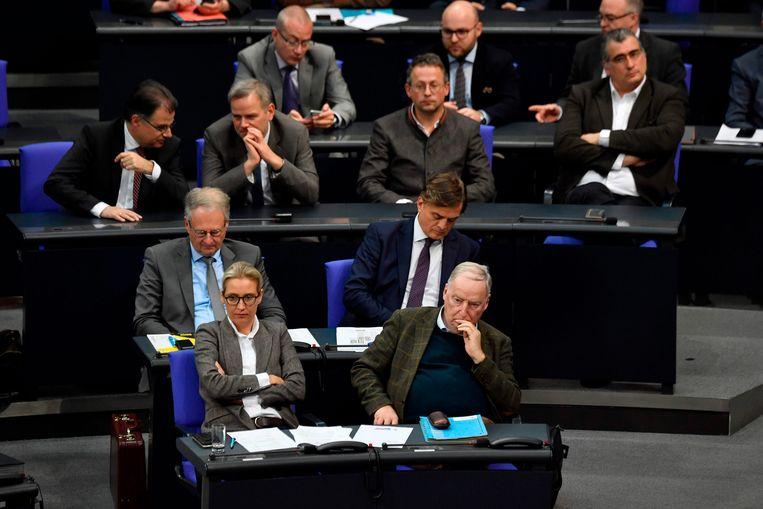 De AfD-fractie in het Duitse parlement. De partij is momenteel verwikkeld in een aantal rechtszaken omtrent partijfinanciering.