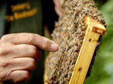 Na De Vrije Tuinder moet ook de bijenvereniging wijken voor woningbouw