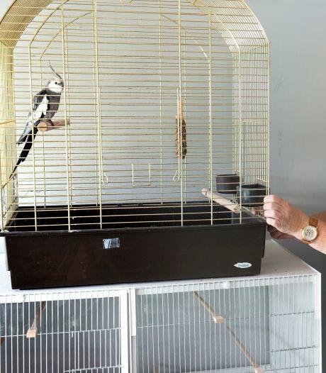Dierenhulp in Groene Hart dreigt ten onder te gaan door corona: 'Dan kunnen we geen dieren meer helpen'