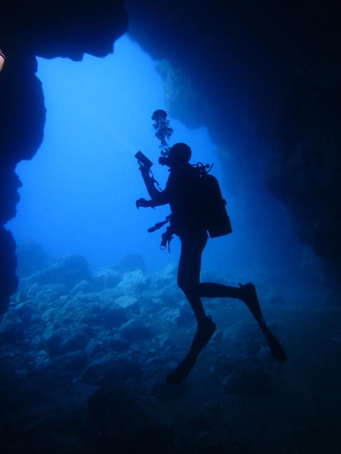 Weekwinnaar: Mariëtte van der Maarel is voor het eerst in jaren zonder kinderen op vakantie. Op Madeira grijpt ze die gelegenheid aan om te duiken. In de onderwaterwereld komt ze een andere duiker tegen. De rust die hij uitstraalde, inspireerde haar. ,,Heerlijk'', zo laat ze weten.