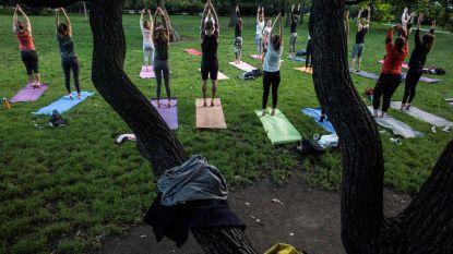 Parken in Berlare vier maanden lang decor voor verschillende yogasessies