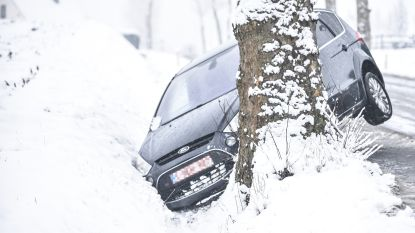 Tegen boom na uitwijkmanoeuvre op spekgladde Olsensesteenweg in Kruisem