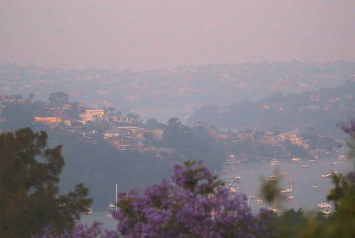 Rook boven een buitenwijk van Sydney.