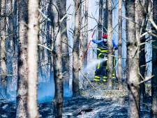 Natuurbrand woedt bij landgoed De Utrecht bij Esbeek