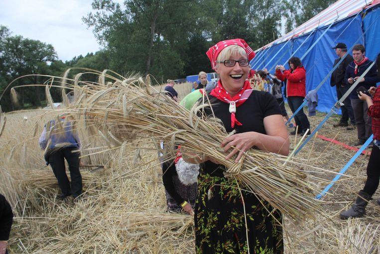 Twee jaar geleden op de Pikkeling: vrijwilligers tonen hoe het graan vroeger werd binnengehaald.