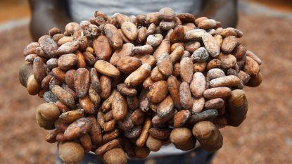 Wereldwinkels delen gratis chocoladerepen uit