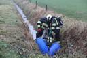 Drugsafval gedumpt in de Brabantse natuur wordt verwijderd.