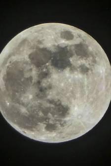 De la vie sur la Lune?