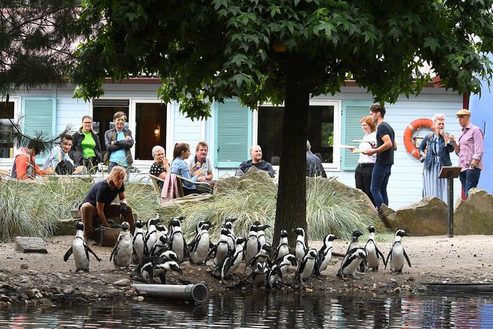Foto ter illustratie: ZooParc Overloon