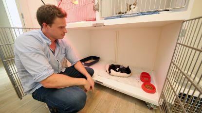 Sprotjesfonds deelt 4.000 euro en 1.500 kilogram dierenvoeding uit aan dierenvzw's in nood door coronacrisis