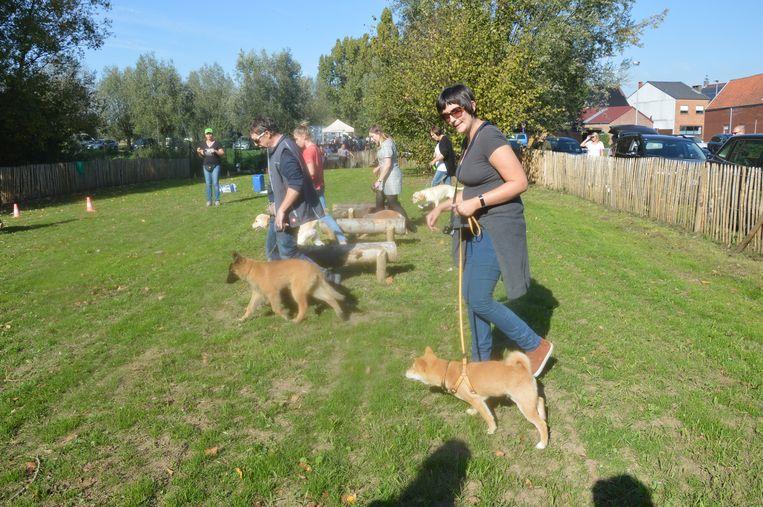 De hondeneigenaars met hun dier op de hondenlosloopweide tijdens de demonstratie van hondenclub 'Onze gezel'.
