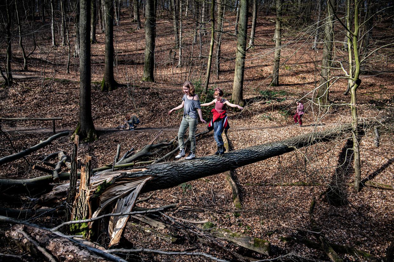 Moeder wandelt met dochters in de bossen bij de Duivelsberg in de buurt van Nijmegen.
