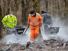 Steenmeel moet redding zijn voor heide, bos en dier op Sallandse Heuvelrug en Veluwe