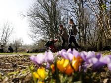 Wat voor effect heeft het warmer wordende klimaat op de stad?